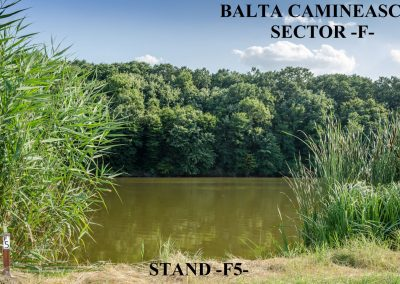 Balta Camineasca Stand Pescuit F5
