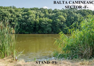 Balta Camineasca Stand Pescuit F6