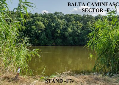Balta Camineasca Stand Pescuit F7