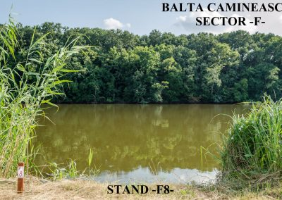 Balta Camineasca Stand Pescuit F8