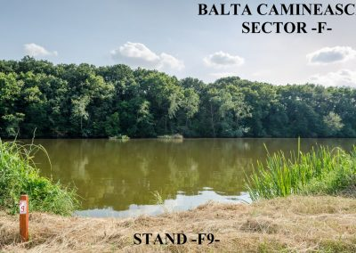 Balta Camineasca Stand Pescuit F9
